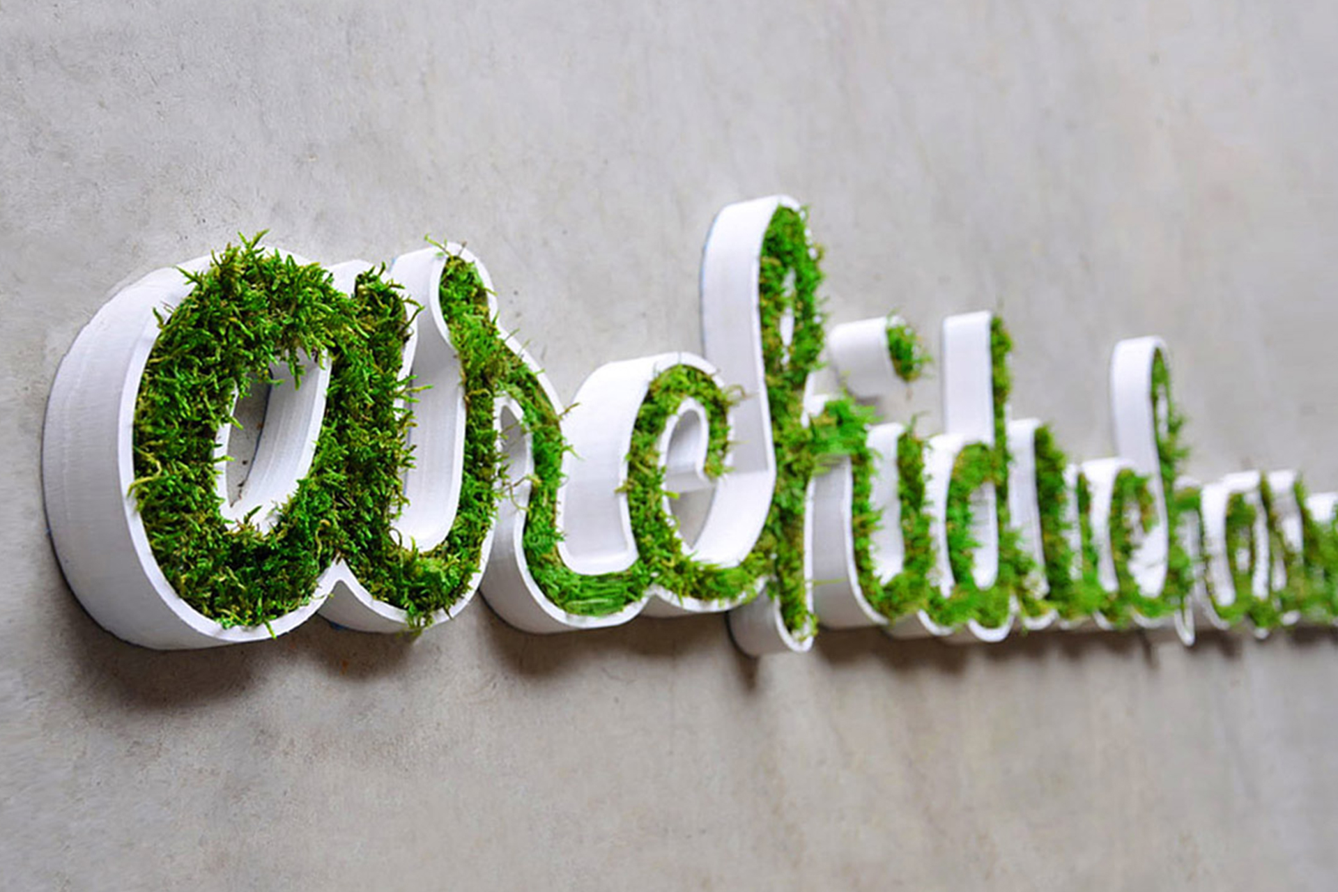 Logo-vegetal-ohmyprint